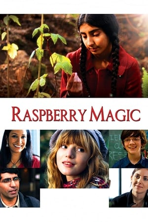 Image Raspberry Magic