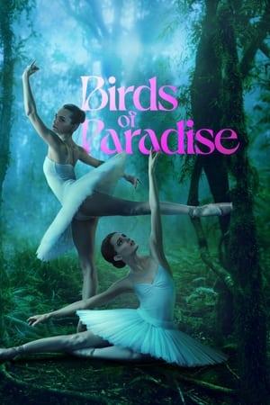 Ver Online Aves del paraíso