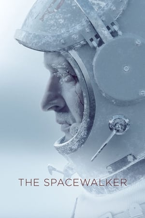 Image The Spacewalker