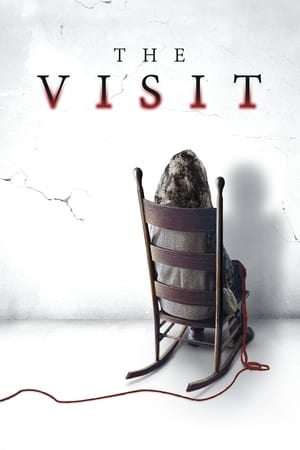 Image The Visit
