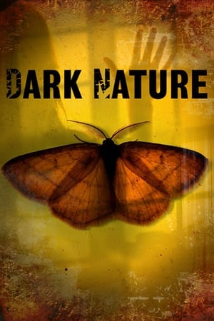 Image Dark Nature