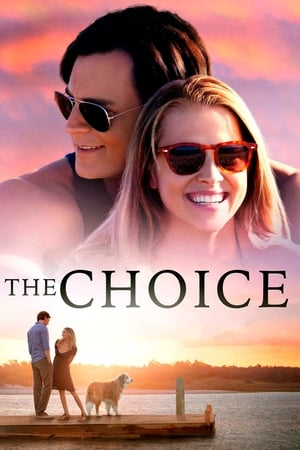 Poster The Choice 2016