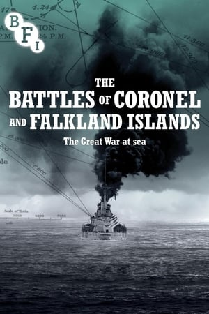 Image The Battles of the Coronel and Falkland Islands