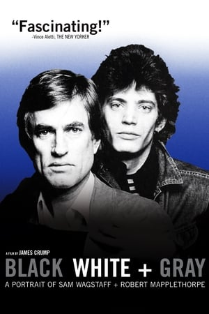 Image Black White + Gray: A Portrait of Sam Wagstaff and Robert Mapplethorpe