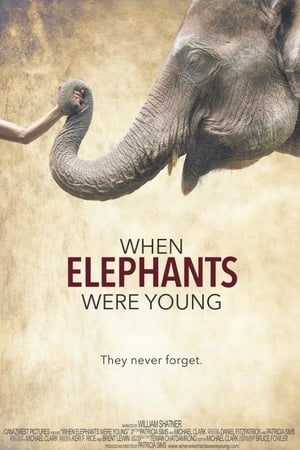 Image When Elephants Were Young