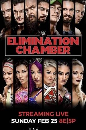 Image WWE Elimination Chamber 2018
