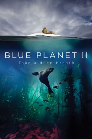 Image Blue Planet II: One Ocean & The Deep