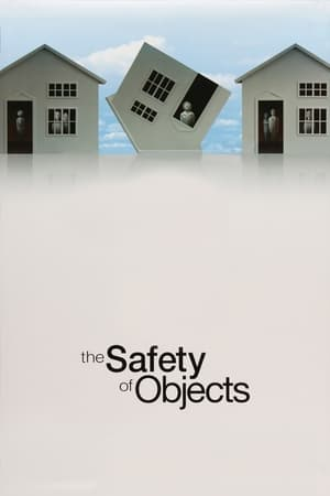 Image The Safety of Objects