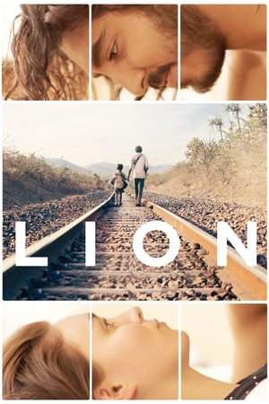 Image Lion. Droga do domu