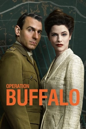 Image Operation Buffalo