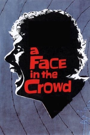 Image A Face in the Crowd