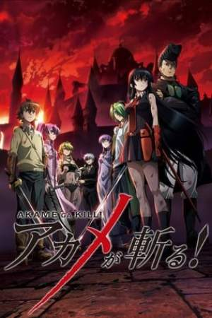 Image Akame ga Kill - Schwerter der Assassinen