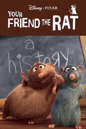 Image Your Friend the Rat