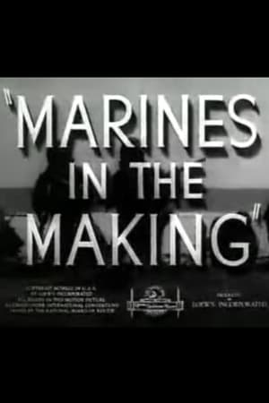 Image Marines in the Making