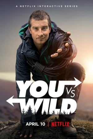 Image You vs. Wild