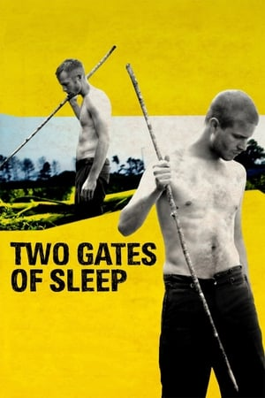 Image Two Gates of Sleep