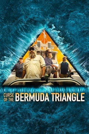 Image Curse of the Bermuda Triangle