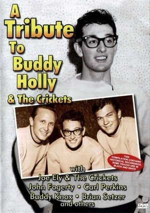 Image A Tribute To Buddy Holly And The Crickets