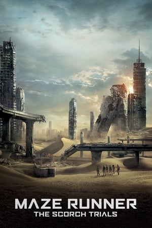 Image Maze Runner: The Scorch Trials