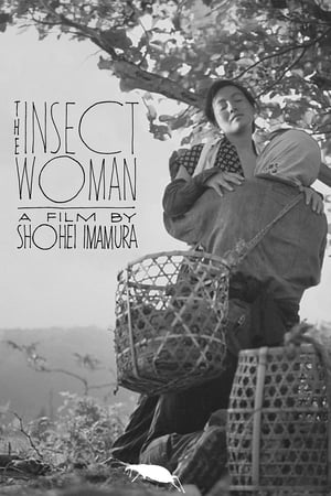 Image The Insect Woman