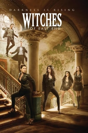 Poster Witches of East End 2013