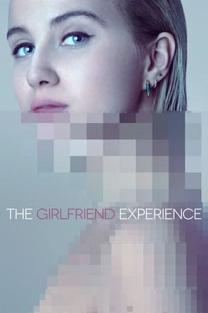 The Girlfriend Experience 3x6 poster