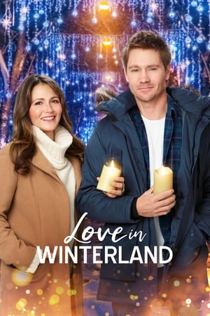 Poster Love in Winterland 2020
