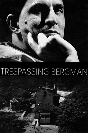 Image Trespassing Bergman