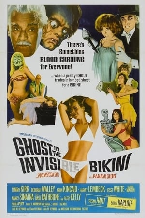 Image The Ghost in the Invisible Bikini