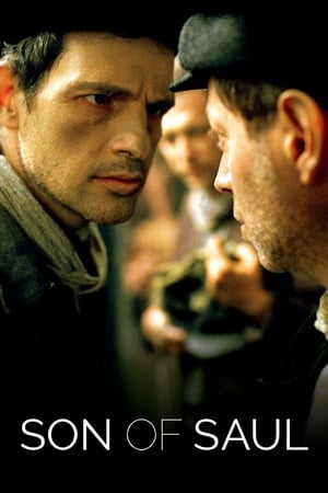Image Son of Saul