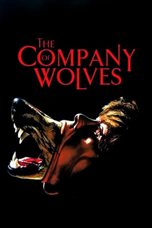 Image The Company of Wolves