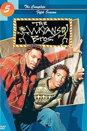 Image The Wayans Bros.
