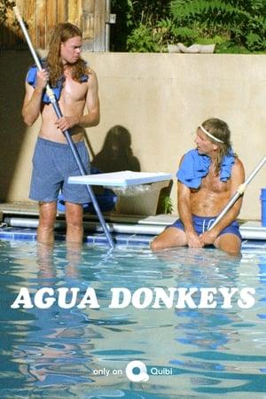 Agua Donkeys poster