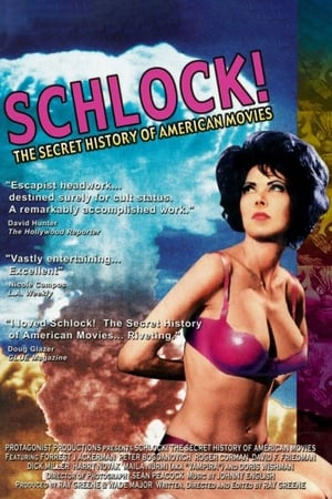 Image Schlock! The Secret History of American Movies
