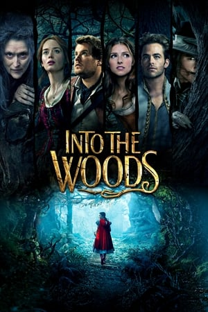 Poster Into the Woods 2014