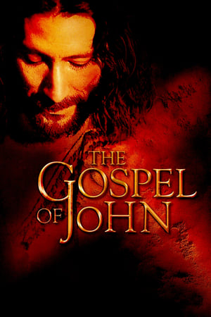 Image The Gospel of John
