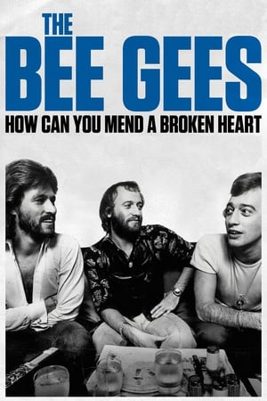 Image The Bee Gees: How Can You Mend a Broken Heart
