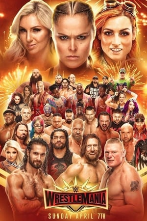 Image WWE WrestleMania 35