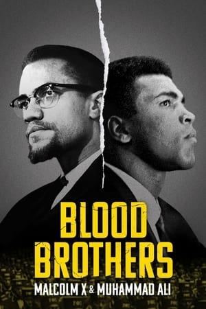 Ver Online Hermanos de sangre: Malcolm X y Muhammad Ali