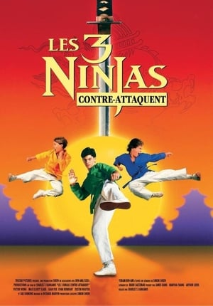 Ninja Kids : Les 3 Ninjas Contre-Attaquent