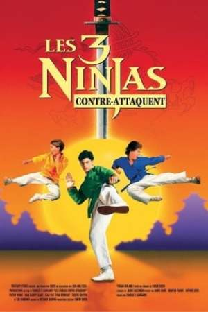 Poster Ninja Kids 2 : Les 3 Ninjas contre-attaquent 1994