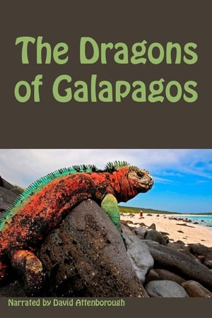 Image The Dragons Of Galapagos