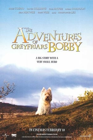 Image The Adventures of Greyfriars Bobby