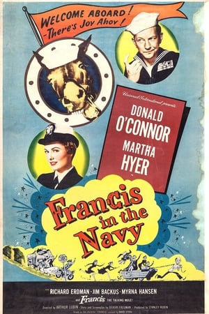 Image Francis in the Navy