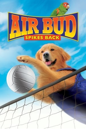 Image Air Bud: Spikes Back