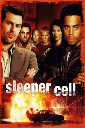 Image Sleeper Cell