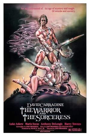 Image The Warrior and the Sorceress