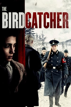 Poster The Birdcatcher 2019