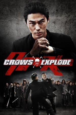 Image Crows Explode