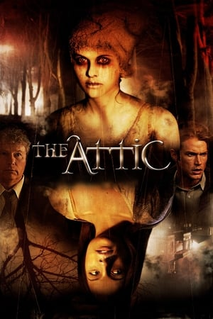Image The Attic